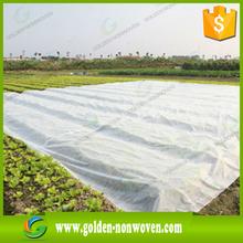 nonwoven fruit bag ,banana fabric, garden cover fabric/Uv Stabilizer 2% Pp Non woven Fabric/non-woven plant protect fabric/rolls