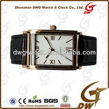 -Men Top Brand Watches with IPG Stainless Steel Case and Japan Movt DWG--S0003-1