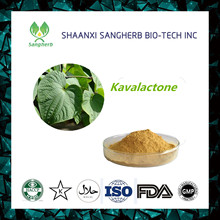 hot sale & high quality Medicinal plant extraction kava root extract with certificate