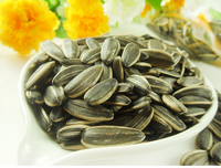 Good quality of jumbo sunflower seeds 363,3638 with cheap price