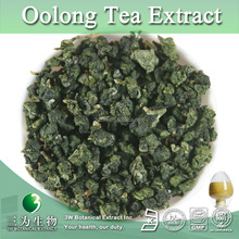 Best Quality Oolong Tea Leaf P.E.,Oolong Tea Leaf Extract,Oolong Tea Leaf P.E. Polyphenols 30% 40% 50%