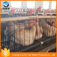 Cheap price A type automatic battery egg laying chicken cages equipment system for hen