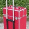 Trolley Case Bag Luggage Set Luggage