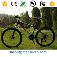 80cc Gasoline engine for bicycle/motorized bicycle/Petrol bicycle road bikes(E-GS102)