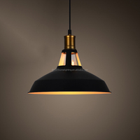 Zhongshan Pendant Lighting With Iron And