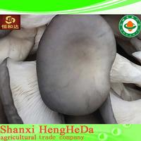 alibaba china with certification chaga