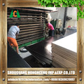 Waterproof black film faced plywood / construction shuttering plywood 1220 x 2440 x 18 mm