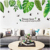 Spring green leaves wall decor stickers for home wall decoration