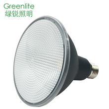 professional led par38 light china