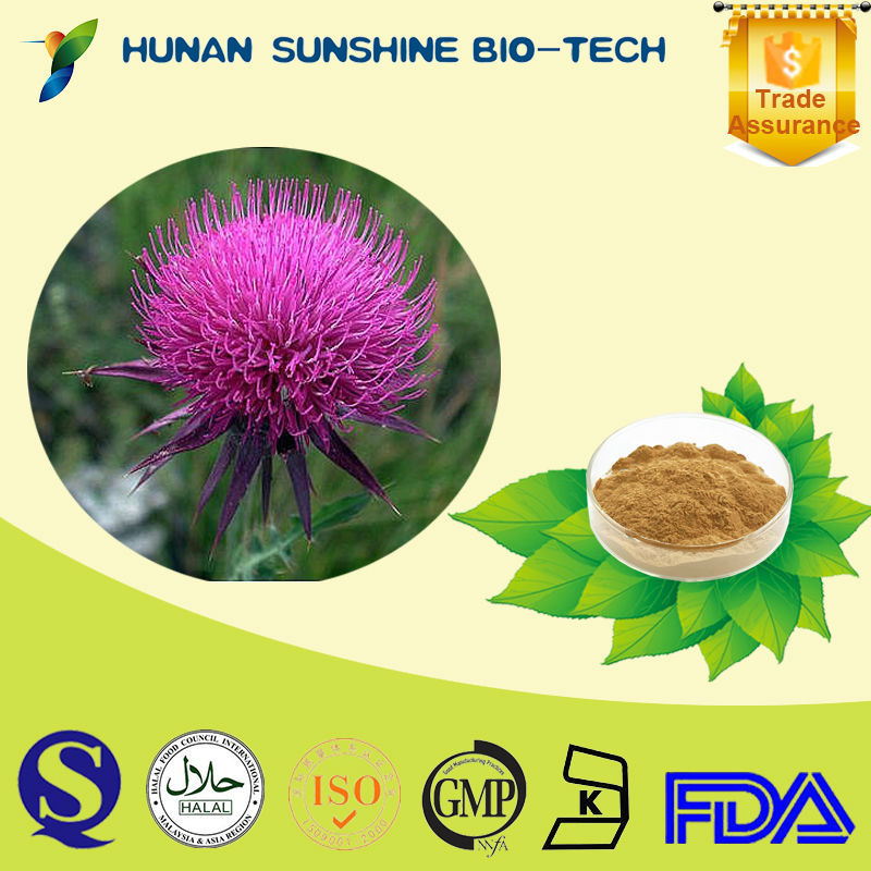 Gold Supplier Natural Herbal Products 100% Milk Thistle Extract Silymarin