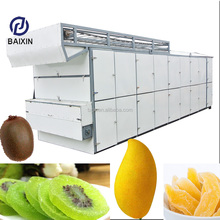 Air Source Dryer Hot Sale Leaves Conveyor Mesh Belt Dryer Vegetable And Fruit Drying Machine