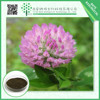 2015 HOT sale red clover extract powder Isoflavones 20% FREE sample High quality