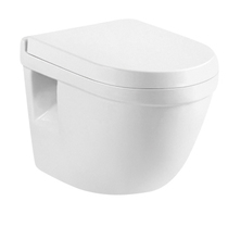 Factory New Product Sanitary Ware Handicap Toilet