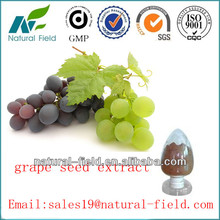 Supplying high quality black grape seed extract