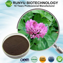 Natural estrogen Red clover p.e. isoflavone/HACCP KOSHER FDA 8%-40% HPLC red clover flower extract
