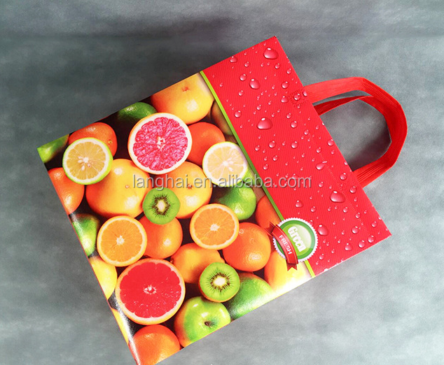 Custom Logo Printing Cheap Recycled Foldable Printing non woven bag