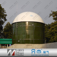 The China AMOCO biogas power plant/biogas digester for animal waste