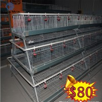 industry chicken house/battery price chicken coop