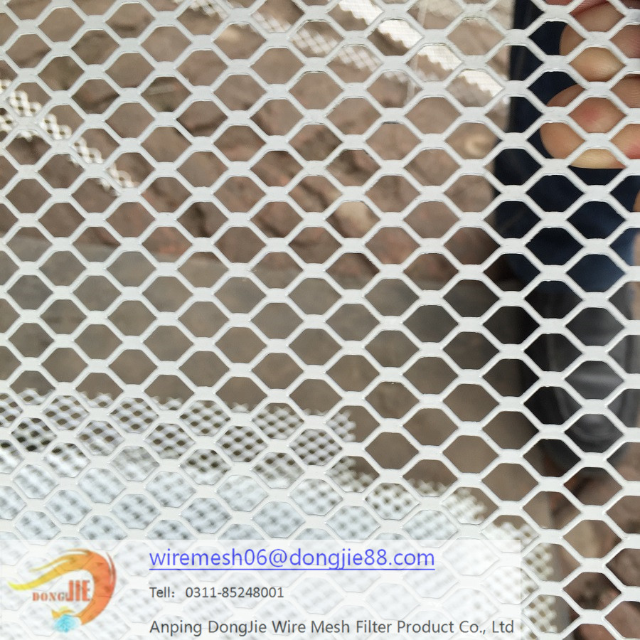 Cold galvanizing expanded metal mesh/stainless steel bird netting
