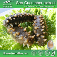 Free sample Seacucumber dry extract/Sea cucumber powder/Trepang extract plant extract