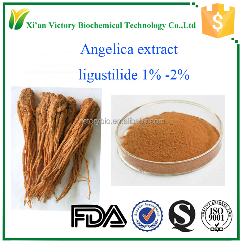 high quality chinese angelica root extract