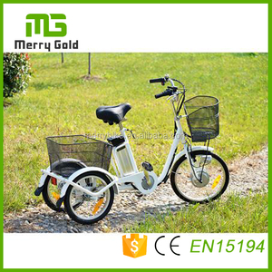 China made 250w Mini small cheap electric cargo tricycle for adults