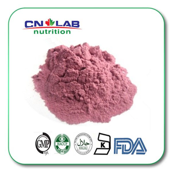 Natural Cranberry Extract 25% Proanthocyanidins
