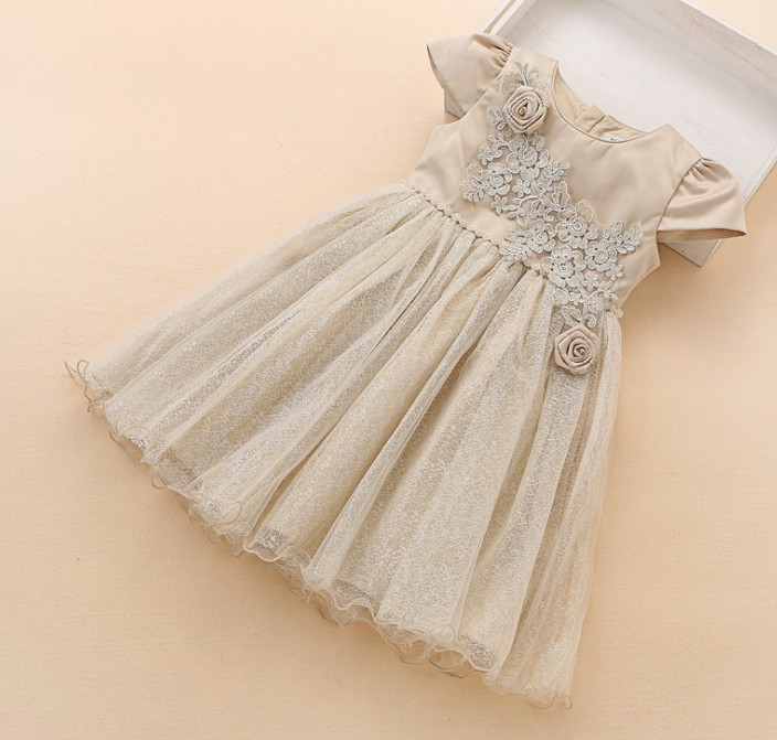 Vintage Champagne Flower Girl Dress Baby Tutu Tulle Dress Bridesmaids Christening Gown