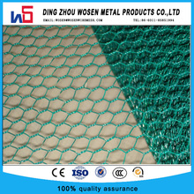 green pvc poultry net/chicken cloth wire netting