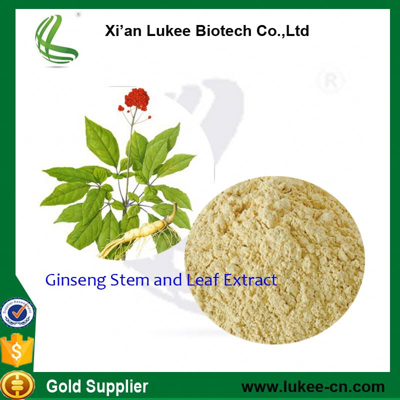Panax ginseng CA Mey Ginseng extract P.E. extract
