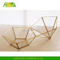 Wholesale Price flower vases plant glass with gold frame glass terrarium