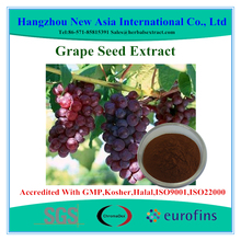 Pure Natural Grape Seed Plant Extract,ID 100% Vitis vinifera,OPCs 95% USP Grade,Low Pesticides,Aflatoxin,PAHs