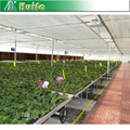 Hot Dipped Galvanized Planting Table Greenhouse Seedbed