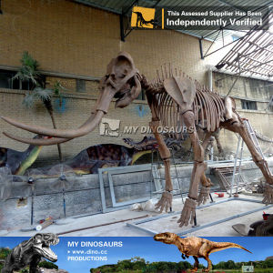 My Dino-wholesale skeletons artificial movies mammoths fossil