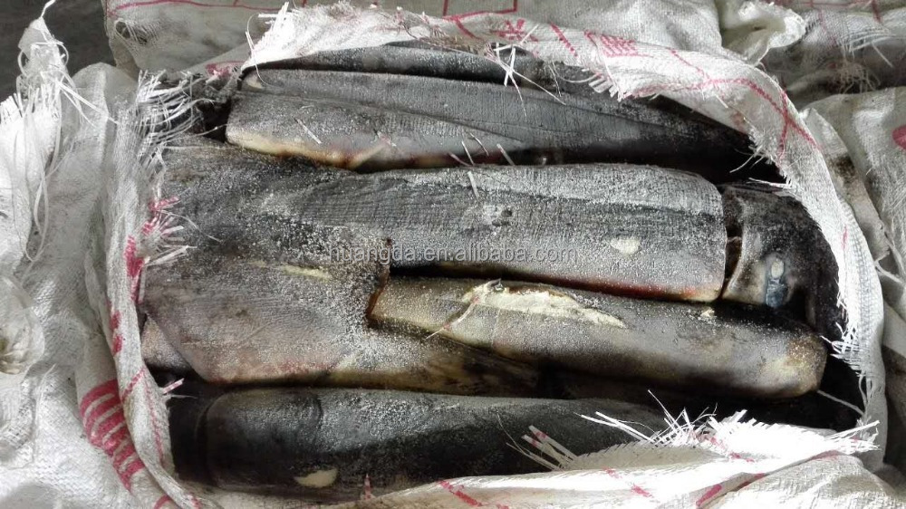 Sea Frozen Giant Squid Peru squid whole round on sales for canning Peru giant squid