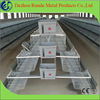 Best price automatic A type chickens layer cage poultry cage