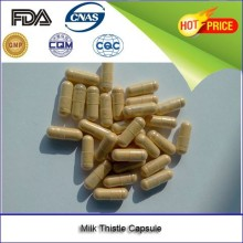 alibaba China factory Milk Thistle capsule a strong free radical scavenging and antioxidant action.