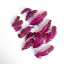Anhui feather synthetic feathers pheasant feathers for carnival costumes