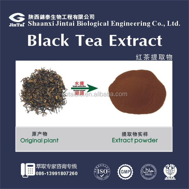 Natural popular Black Tea Extract 40% theaflavin