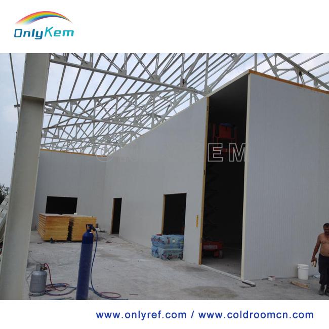 Foam Sandwich Panel Construction : Pu foam sandwich panel for cold room building buy