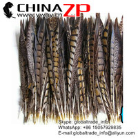 Top Manufactor ZPDECOR Selected Prime Quality Good Natural Lady Amherst Pheasant Feathers for Fashion Show