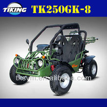 TIKING TK250GK-8 dune buggy/ china 4x4 atv
