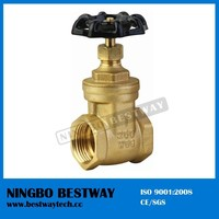 Non Rising Stem Brass Gate Valve