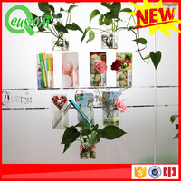 Professional washable hanging green wall fabric planter bag