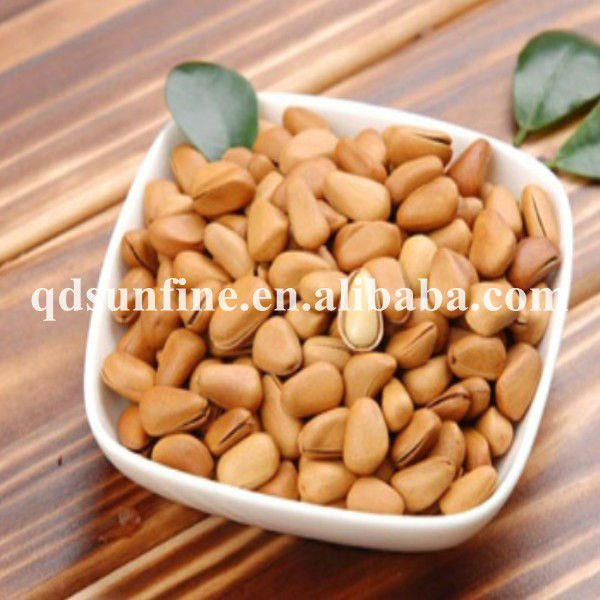 pine nut in shell