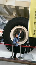 Truck Tyres/Tires With Best Quality For Heavy Light Truck ,Construction Machinery