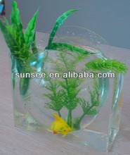 Hot sale factory directly sale indoor acrylic fish farming ,mini fish tank FT-039