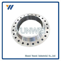 PN25 Stainless Steel DN10-DN2000 WN Stainless Steel Pipe Flange