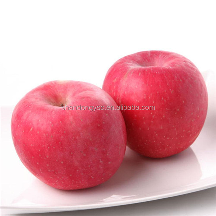 best quality fuji apple fruit fresh packed with customized boxes