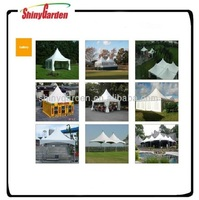 2 car parking canopy tent, exhibition tent